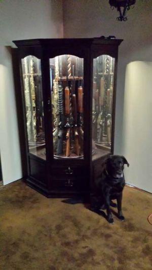 McCready 12-Gun-Corner-Cabinet