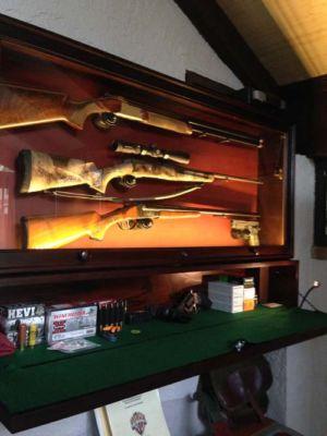 Beach 3 gun display with storage