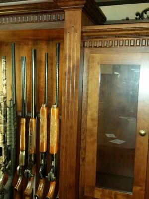 book-case-gun-cabinet