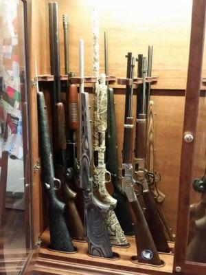 Webster-17-long-gun-combo-cabinet-20170613 110811